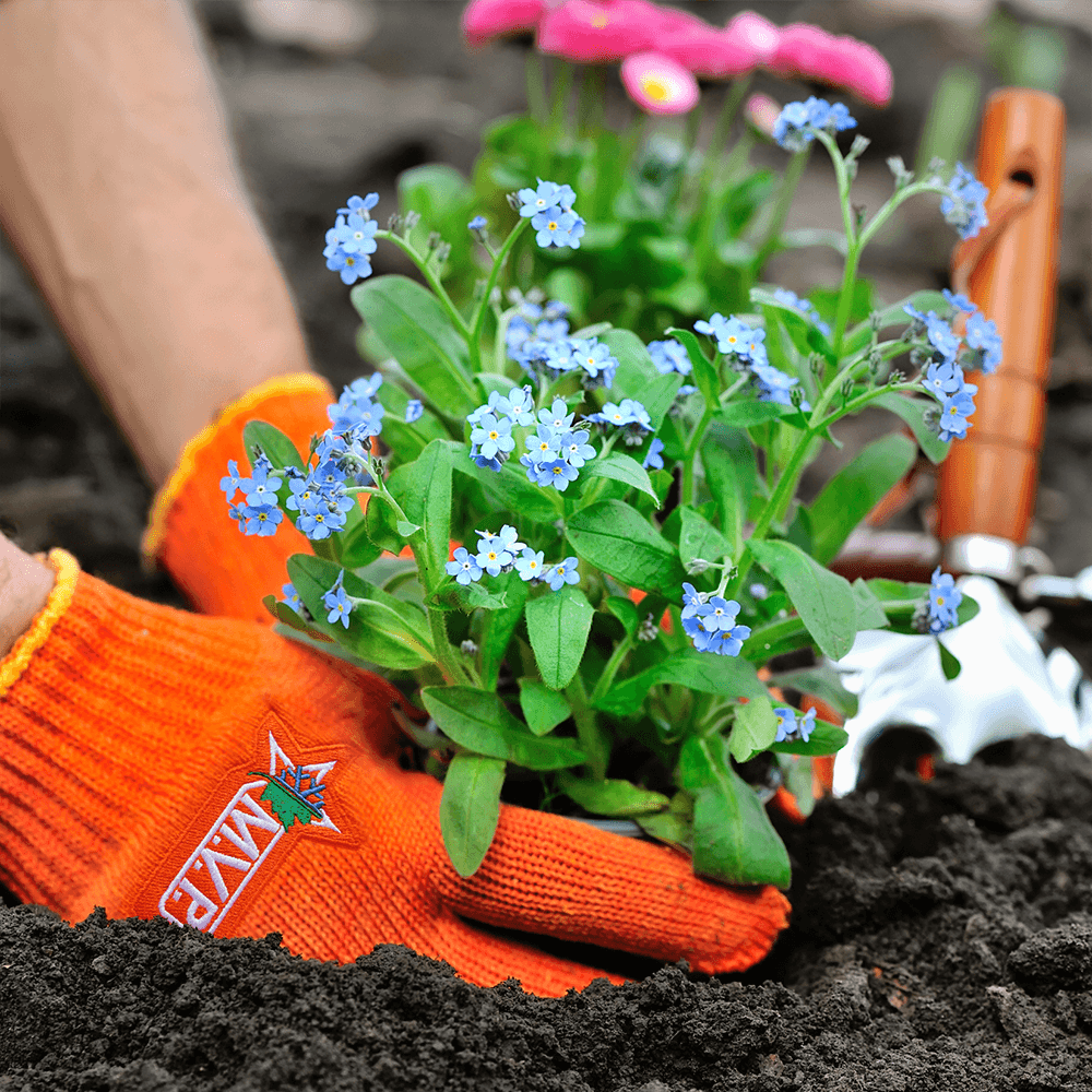Rocky River, Ohio Landscaping Jobs