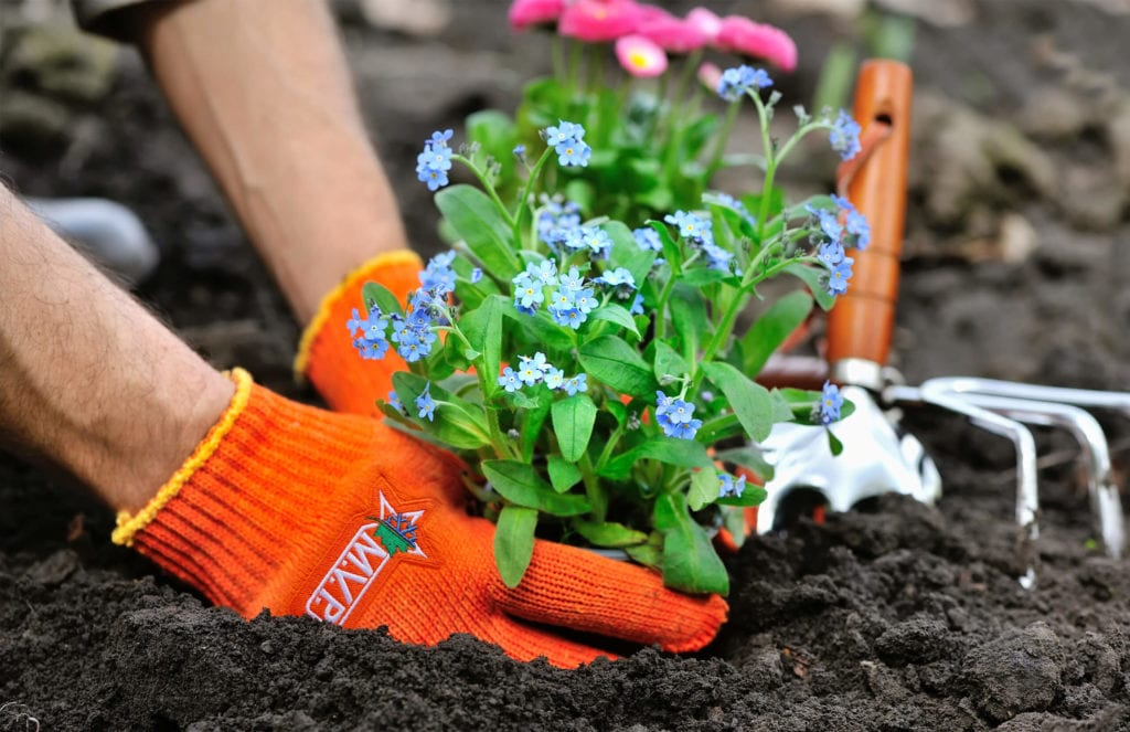 Rocky River, OH Commercial Landscaping