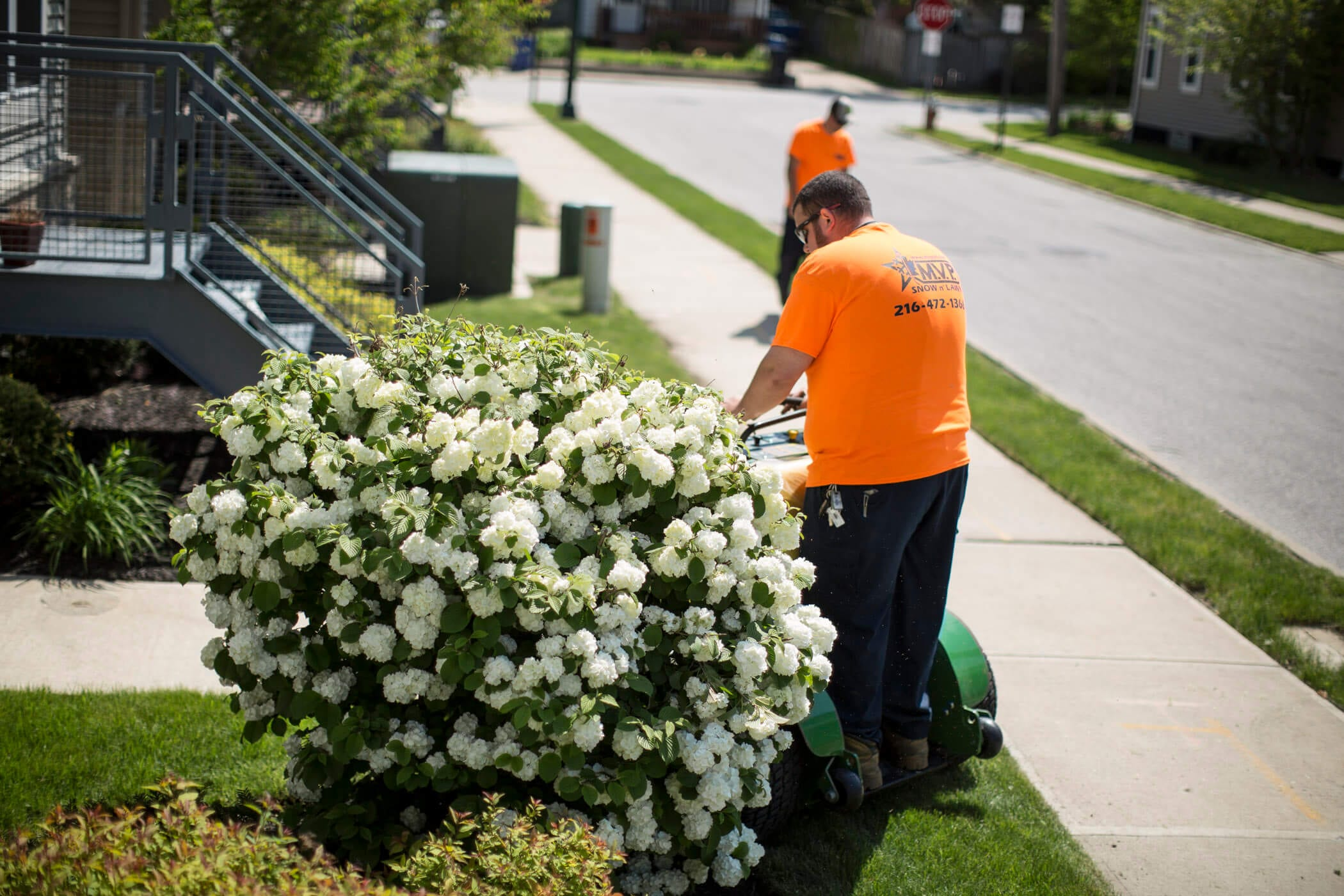 Rocky River, Ohio Professional Landscaping