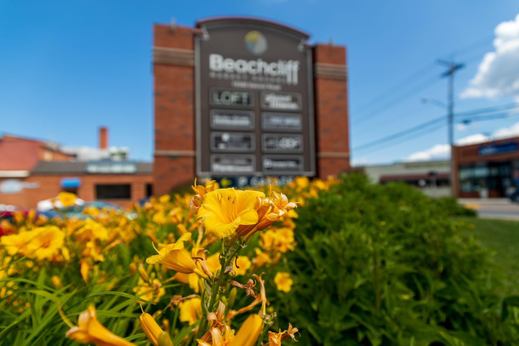 Rocky River - Beachcliff Shopping Center6